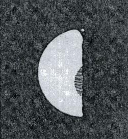 Schröter's Drawing of Venus (1791)